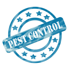 Call Quality Pest Control of Pompano Beach, today! (954) 906-1636